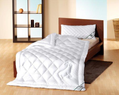 f a n frankenstolz 52330 10722 01 4 jahreszeiten. Black Bedroom Furniture Sets. Home Design Ideas