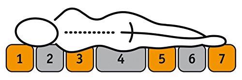 f.a.n. Frankenstolz 72449-76164-10, Artikel 090 x 200 cm, 7-Zonen-Tonnentaschenfederkern-Matratze Adaptionsmatratze Comfort T, Härte 3